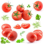 Collection of tomatoes and green leaves — Stock Photo