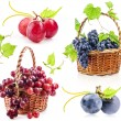 Collection of Dark and red grapes — Stock Photo