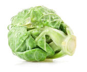 Fresh green Brussels sprout — Stock Photo