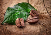 Coffee grains and green leaf — Stockfoto