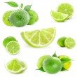 Collection Fresh lime and slice — Stock Photo #18770599