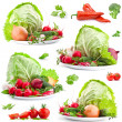 Collections of fresh vegetables - Stock Photo