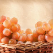 Grapes — Stock Photo #18771161