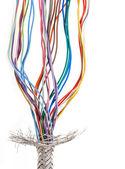 çok renkli kablo — Stok fotoğraf