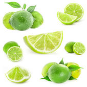 Collection Fresh lime and slice — Stock Photo