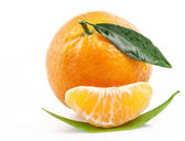 Tangerine fruit — Stock Photo