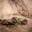 Coffee grains and green leaf — Stock Photo