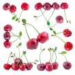 Collection of Cherries - Stock Photo