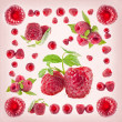 Raspberry background — Stock Photo #25676817