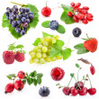 Collection of berry fruit — Stock Photo #25676887