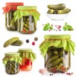 Collection of Pickles — Stock Photo