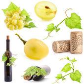 Collectie van druiven, de fles en de kurk — Stockfoto