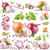 Collezioni di aglio e cipolla con pepe e prezzemolo — Foto Stock