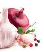 L'ail et l'oignon avec le poivre et le persil — Photo