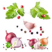 Samlingar av vitlök och lök med pepparkorn och persilja — Stockfoto