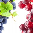 Stock Photo: Ripe dark and red grapes with leaves