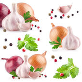 Collections de l'ail et l'oignon avec le poivre et le persil — Photo