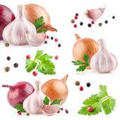 大蒜和洋葱与胡椒和香菜的集合 — 图库照片