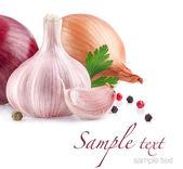 Vitlök och lök med pepparkorn och persilja — Stockfoto