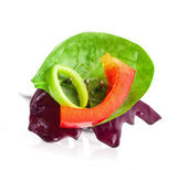 Vegetable salad on fork — Stock Photo