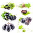 Stock Photo: Ripe dark grapes with leaves