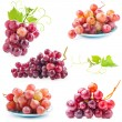 Collections of Red grape — Stock Photo #37697491