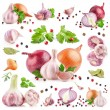 Collection of garlic and onion — Stock Photo #37697537