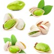 Collections of Pistachio nuts — Stock Photo