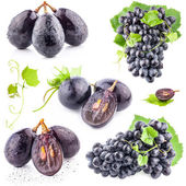 Ripe dark grapes with leaves — Stock Photo