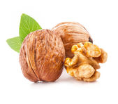 Walnut and a Kernel — Stock Photo