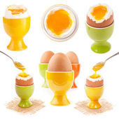 Light boiled egg in egg cup — 图库照片