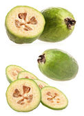 Feijoa (Acca sellowiana) — Stock Photo