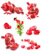 Collections of Pomegranate fruits — Stock Photo
