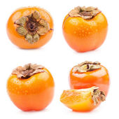 Collection of Persimmon — Zdjęcie stockowe