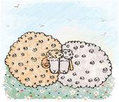 Two sheep. Vector illustation — Stock Vector