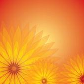Transparent flower — Stock Vector