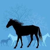Horses in field — Stock Vector