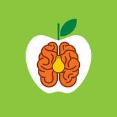 Brain idea or concept — Stock Vector