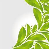 Green leaves — Vetorial Stock