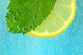 Scheibe zitrone, minze blatt und wasser mit blasen — Stockfoto