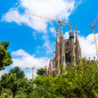 Sagrada trees crane - Stock Photo