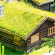 Grass roof country house — Stock Photo #12491121