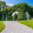 Path in botanical garden — Stock Photo