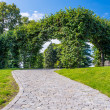 Path in botanical garden — Stock Photo #12519134