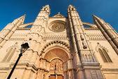 Cattedrale di palma de mallorca — Foto Stock