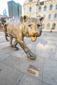Oslo Tiger — Stock Photo