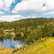 Beautiful landscape with cottage near a lake and trees — Stock Photo