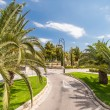 Road in tropical garden — Stock Photo #12642617