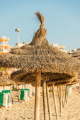 Straw beach umbrellas in line Mallorca Spain — Stock Photo