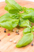 Basil leafs and pepper corn on wooden cutting board — Stock Photo